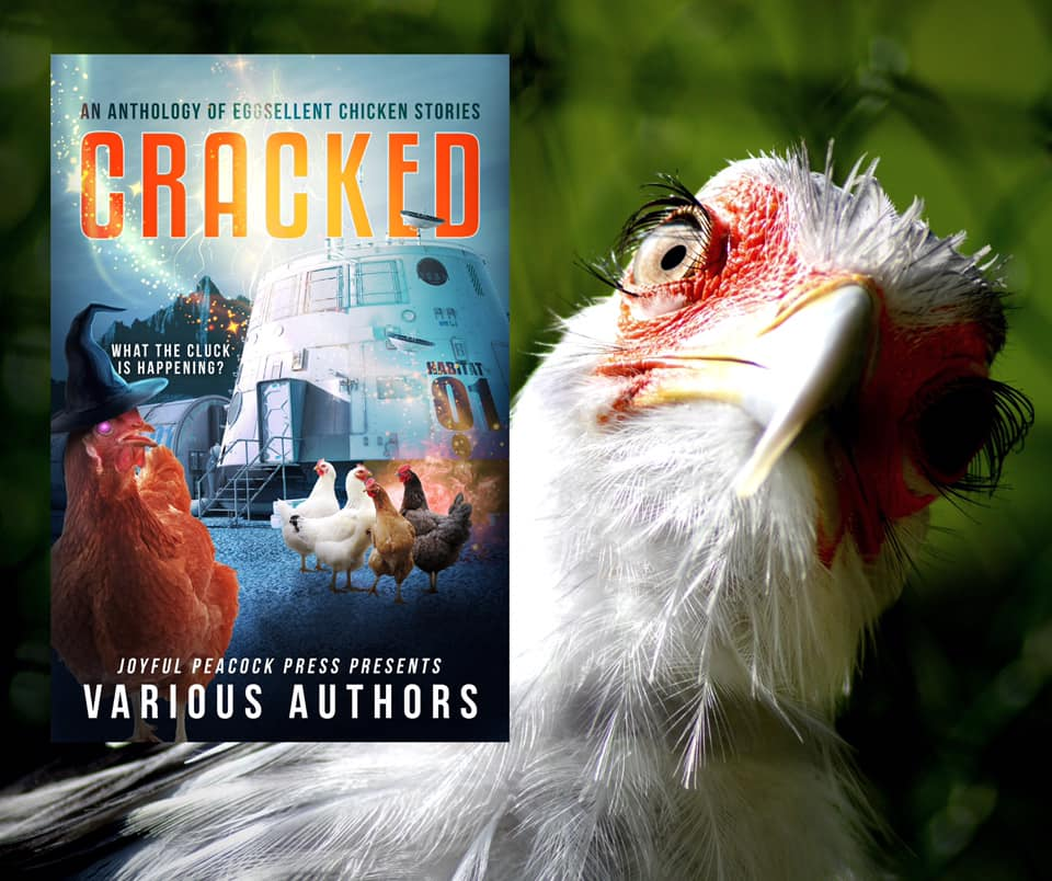 cover art for CRACKED: An Anthology of Eggsellent Chicken Stories